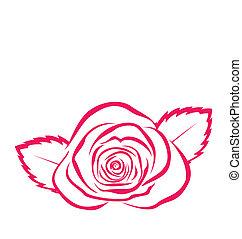 style, rose, isolé, main, fond, dessiné, blanc