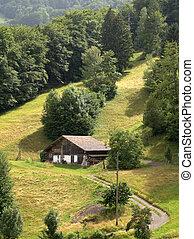suisse, ferme