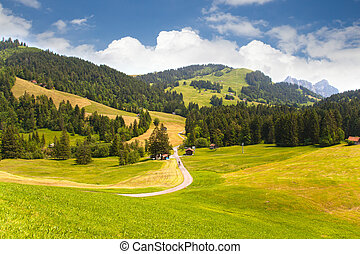 suisse, vallée