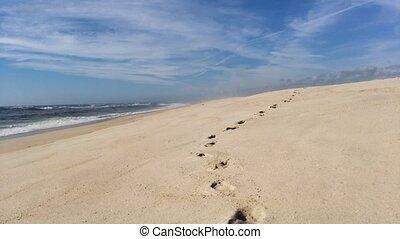 suivre, encombrements, plage, rivage