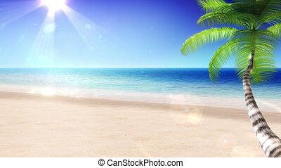 sun., arbre., paume, mer, looped.