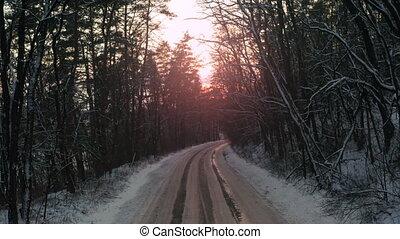 sunset., par, forêt, chariot, forest., hiver, route, mystérieux, coup