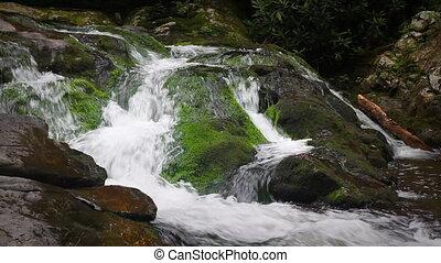 sur, chute eau, moussu, rochers