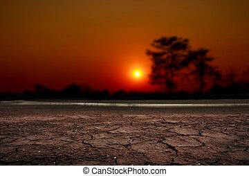 sur, coucher soleil, toqué, désert