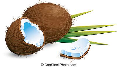 sur, noix coco, blanc