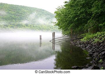 sur, rivière, brouillard