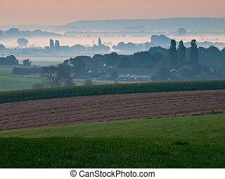 sur, tôt, vue, paysage, agricole, brumeux, matin