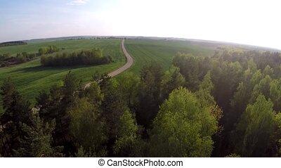 sur, voler, field., forêt