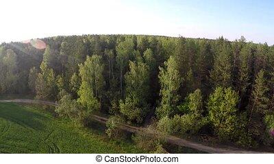 sur, voler, field., forêt, f