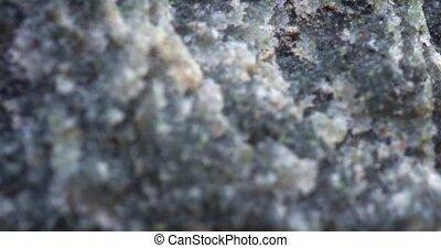 surface, naturel, macro, pierre, coup