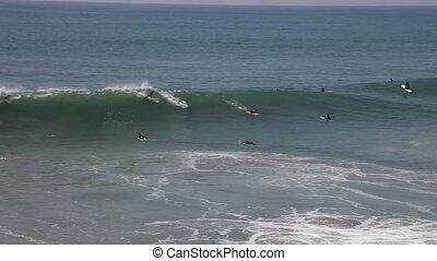 surfer, plage, gens