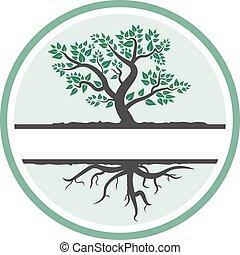symbole, arbre, feuillage, ou, racines, icône