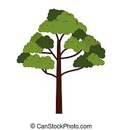 symbole, arbre, nature