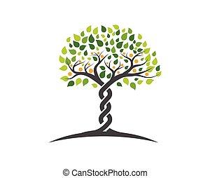 symbole, logo, arbre, famille, icône