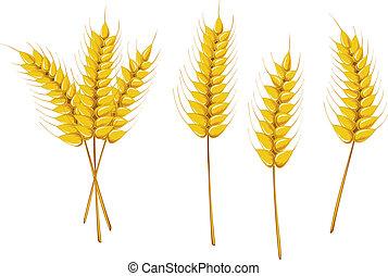 symboles, agriculture
