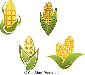 symboles, maïs, jaune, icônes