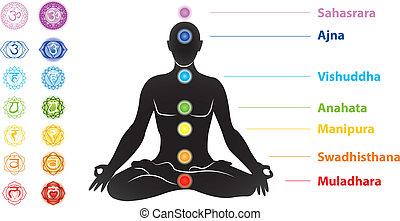 symboles, sept, silhouette, chakras, homme