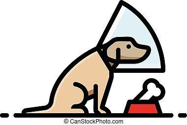 tête, cône, chien