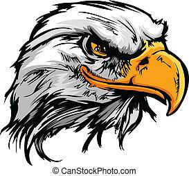 tête, illustration, aigle, vecteur, graphique, mascotte, chauve