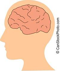 tête plate, illustration, cerveau, vecteur, conception, humain, icône