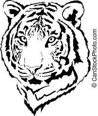 tête, tigre, interprétation, noir