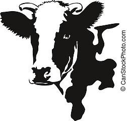 tête, vecteur, illustration, vache