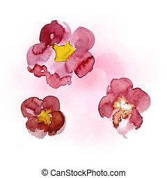 tableau aquarelle, sakura