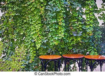 tables, bois, trois, rond, fond, lierre