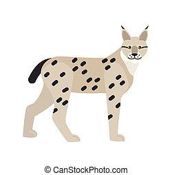 tacheté, gracieux, portrait, lynx, style., chasse, félin, coat., isolé, arrière-plan., magnifique, blanc, animal, plat, illustration, carnivore, dessin animé, cat., vecteur, lynx, sauvage, mammifère, ou, avide