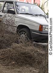 tas, branches, voiture