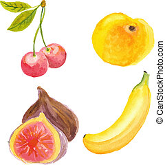 technique, abricot, main, aquarelle, cerises, figues, banana., dessiné