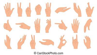 tenue, humain, vecteur, doigts, femelle transmet, poignet, traversé, pouce, ensemble, paix, main, haut., dessin animé, poing, gestes, paumes, poses., pointage