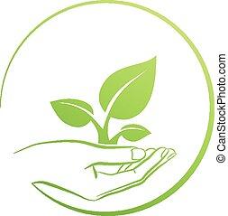 tenue, plante, logo, main, concept