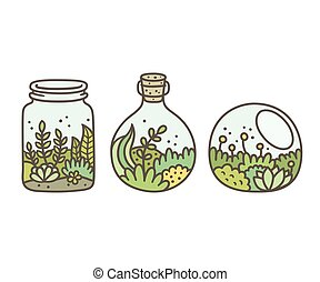 terrariums, plante