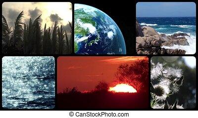 terre planète, tribut