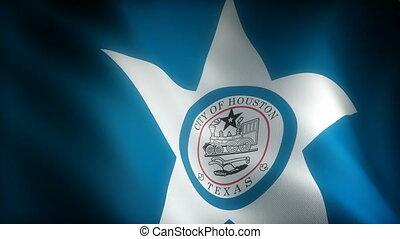 texas, houston, drapeau