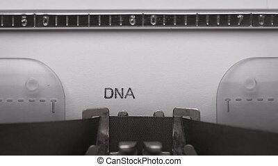 texte, machine écrire, dactylographie