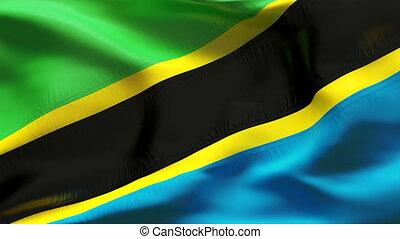 textured, drapeau, tanzanie, coton
