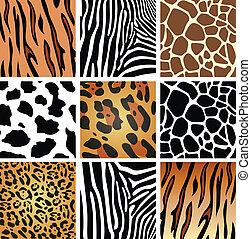 textures, peau, animal