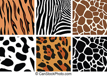 textures, peau animale