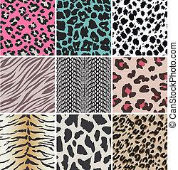 textures, vecteur, peau animale