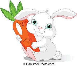 tient, carotte, lapin, géant