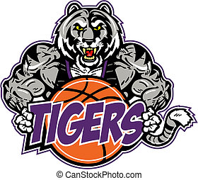 tigre, basket-ball, musculaire