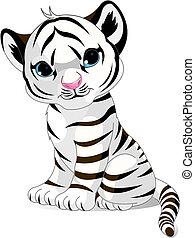 tigre, mignon, blanc, petit