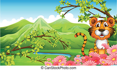 tigre, montagnes, fleurs, travers