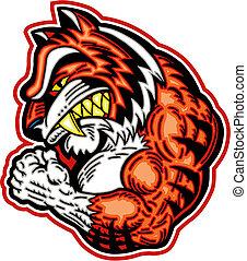 tigre, musculaire, mascotte