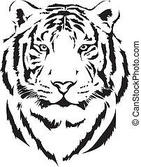 tigre, noir, tête, interprétation