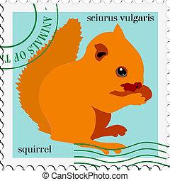 timbre, vecteur, écureuil