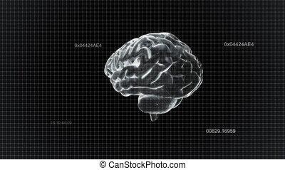 timecode, blanc, cerveau, tourner