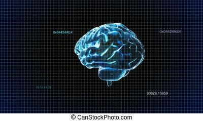 timecode, cerveau, tourner